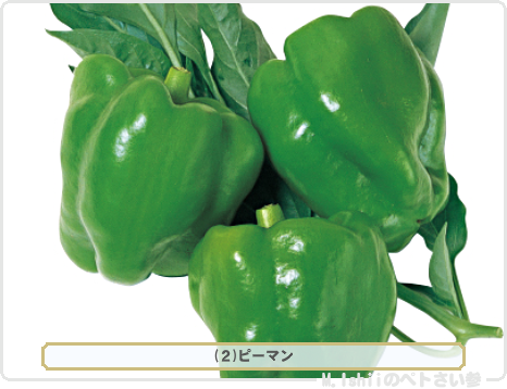 野菜投票2017_01候補02
