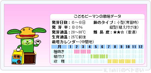 ペトさい(こどもピーマン)14