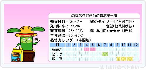 ペトさい(内藤とうがらし)17