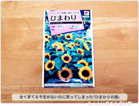 春夏向け野菜の種2017_02