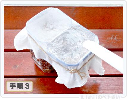 ペトさい(ミニチンゲン菜)07