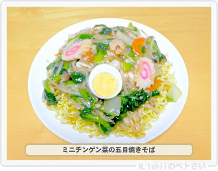 ペトさい(ミニチンゲン菜)28