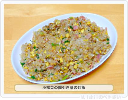 ペトさい(小松菜)32
