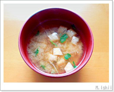 ペット栽培III(たべたい菜)13