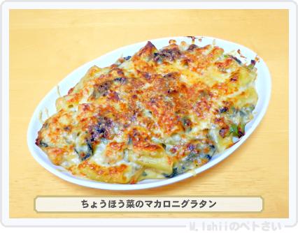 ペトさい(ちょうほう菜)33