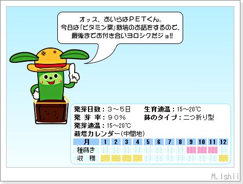 ペット栽培III(ビタミン菜)01
