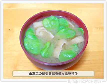 ペトさい(山東菜)30