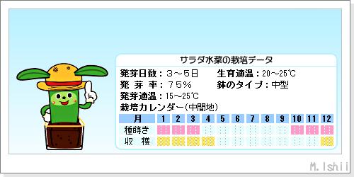 ペット栽培III(サラダ水菜)02