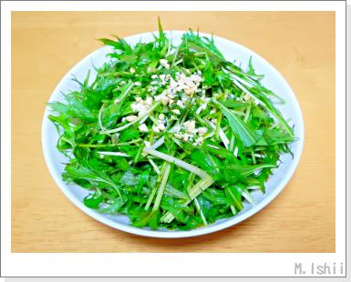 ペット栽培III(サラダ水菜)18