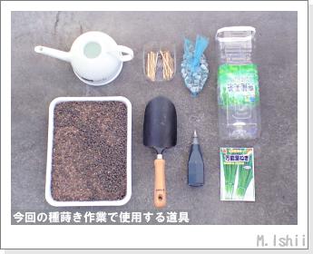 ペット栽培II(万能葉ねぎ)03