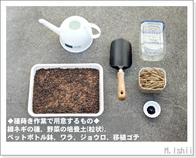 ペット栽培III(細ネギ)03