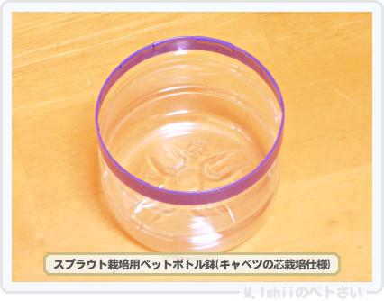 ペトさい(キャベツの芯)05