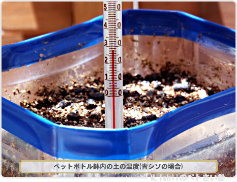 鉢の土の温度02