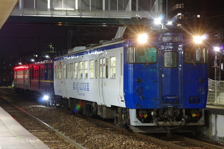 kashii_170209_4.jpg