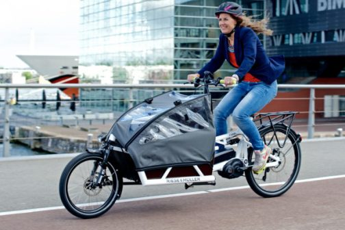 RiesseMuller-Load-eCargo_full-suspension-modular-ebike-cargo-bike_kid-canopy-600x400.jpg