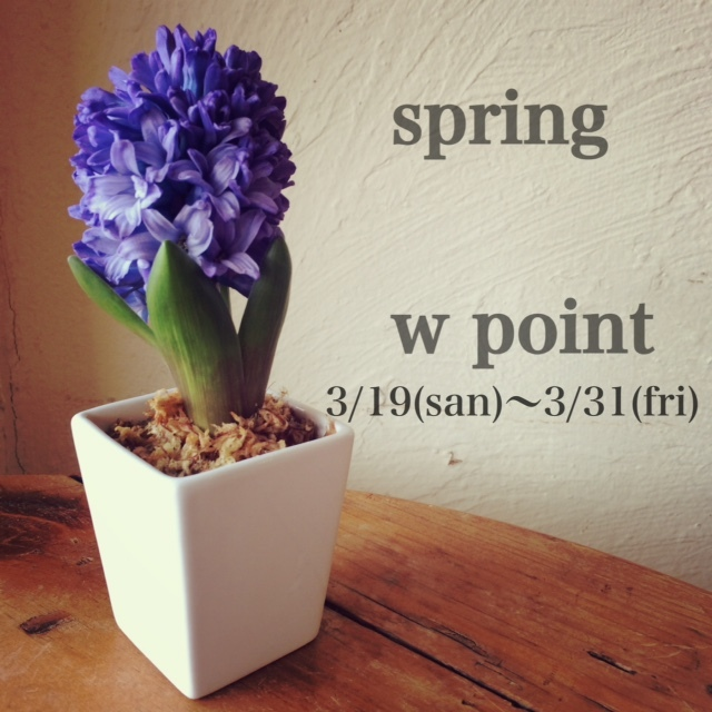 2017wpoint spring