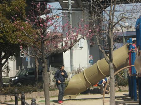 1 桃ヶ池公園