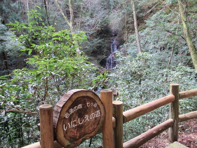 170304岩湧山道 (5)