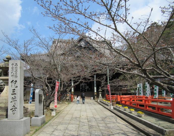 170328紀三井寺 (2)