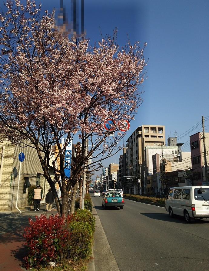 170403堺東 (1)