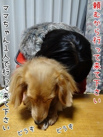 kinako6710.jpg