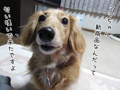 kinako6746.jpg