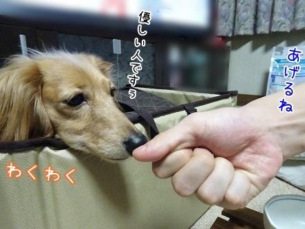 kinako6792.jpg