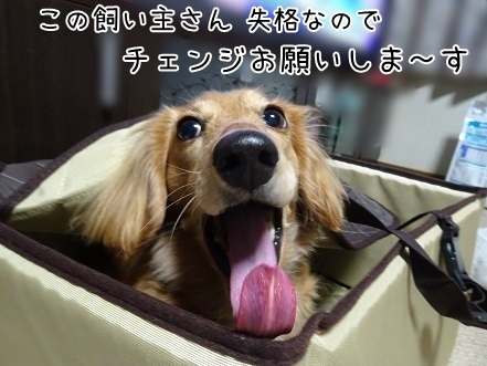 kinako6974.jpg