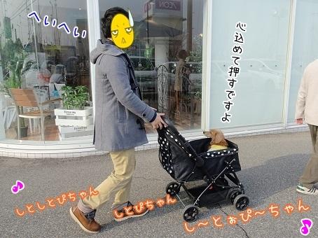 kinako6977.jpg