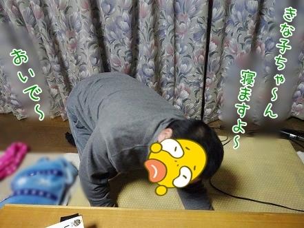 kinako7114.jpg