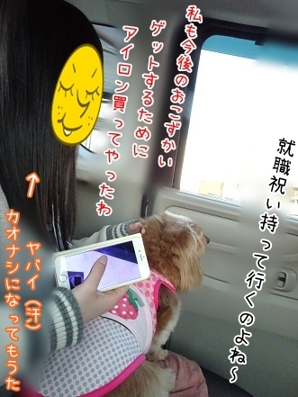 kinako7274.jpg