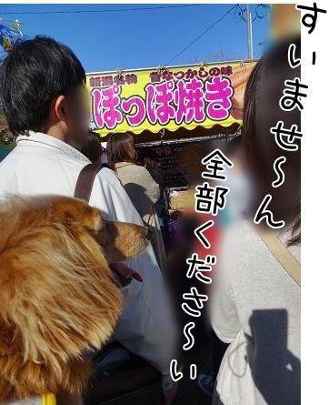 kinako7365.jpg