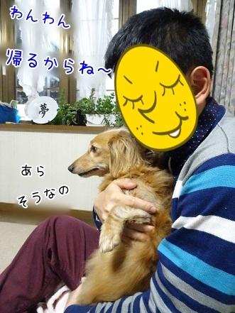 kinako7411.jpg