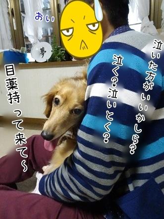 kinako7412.jpg