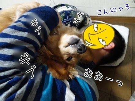 kinako7413.jpg