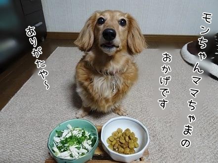 kinako7436.jpg