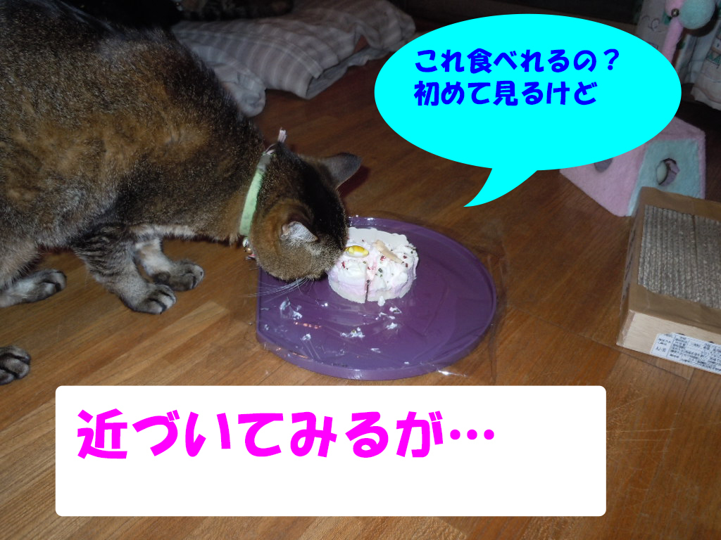 8歳誕生日4