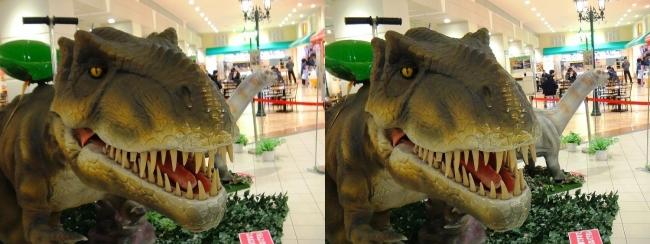 イオン東大阪店 恐竜ロボット ティラノサウルス・アパトサウルス②(平行法)