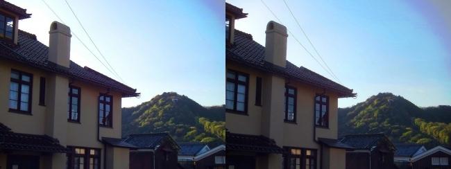 アンドリュース記念館・八幡山(交差法)