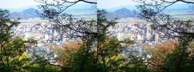 八幡山山頂 展望館②(交差法)