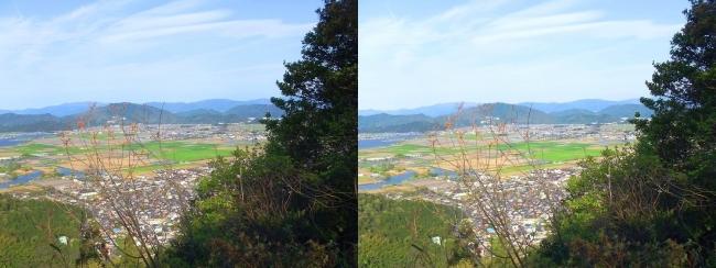 八幡山山頂 北の丸跡②(平行法)