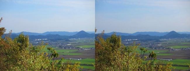 八幡山山頂 西の丸跡⑥(交差法)