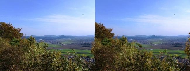 八幡山山頂 西の丸跡⑤(交差法)
