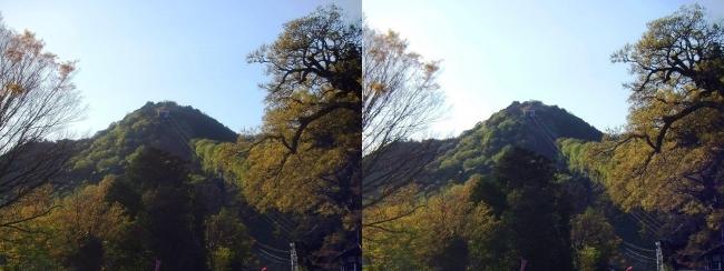 八幡山(平行法)