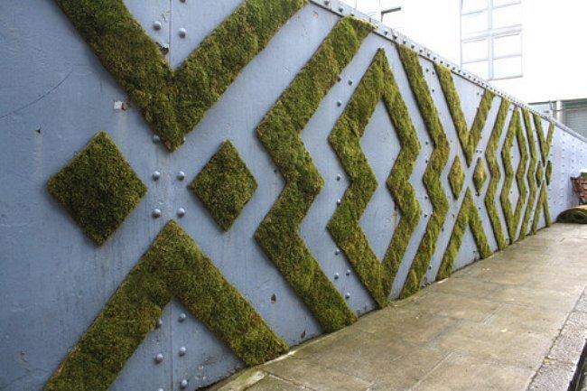 wall-moss-design.jpg