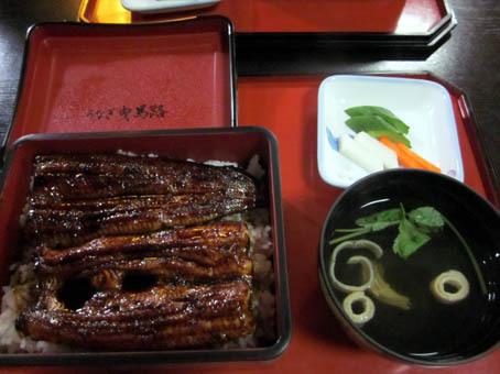 hikumaji8.jpg