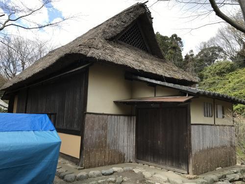 【2017 松ケ岡公園の桜並木】・12