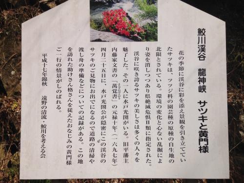 【春間近の龍神峡】・11