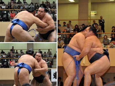 大相撲宝塚場所 12