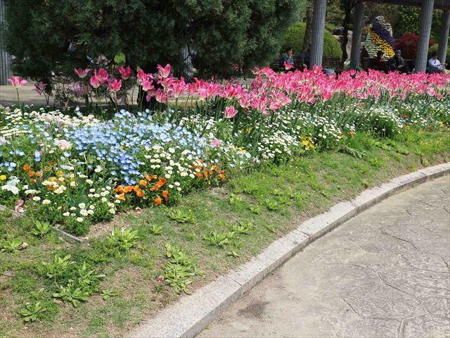 2017 04 29_フラワーセンター_1118_R